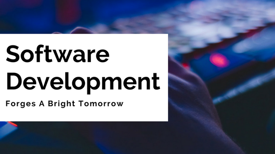 Software Development Forges A Bright Tomorrow